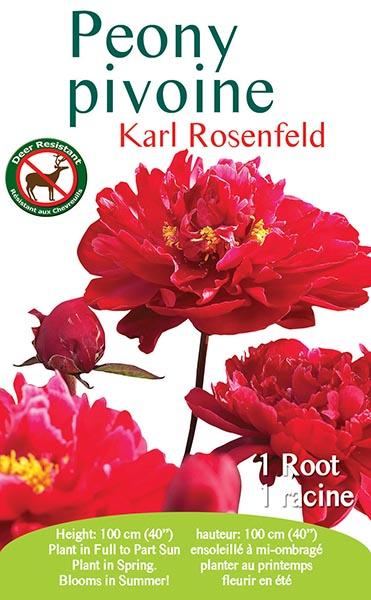 Peony Karl Rosenfeld