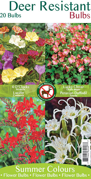 Deer Resistant Bulbs Mix 1
