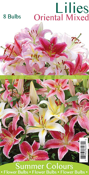 Lilies - Oriental Mixed
