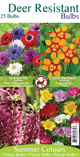 Deer Resistant Bulbs Mix 2